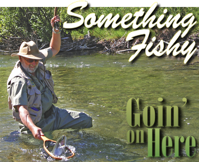 Pa Trout Fishing Season Opens This Saturday April 16