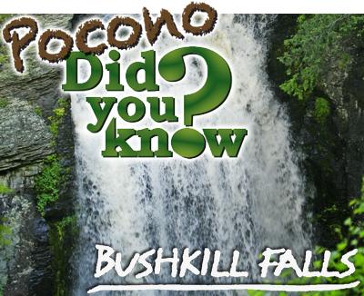 PDYK Bushkill Falls LG