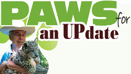 Claws 'N' Paws Critters