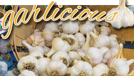 Pocono Garlic Festival returns to Shawnee Saturday & Sunday!