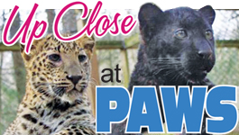 THIS WEEK…Explore an Amazing Animal Attraction