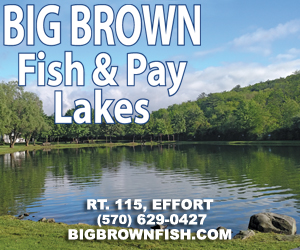 Big Brown Fish & Pay Lakes | Effort, PA
